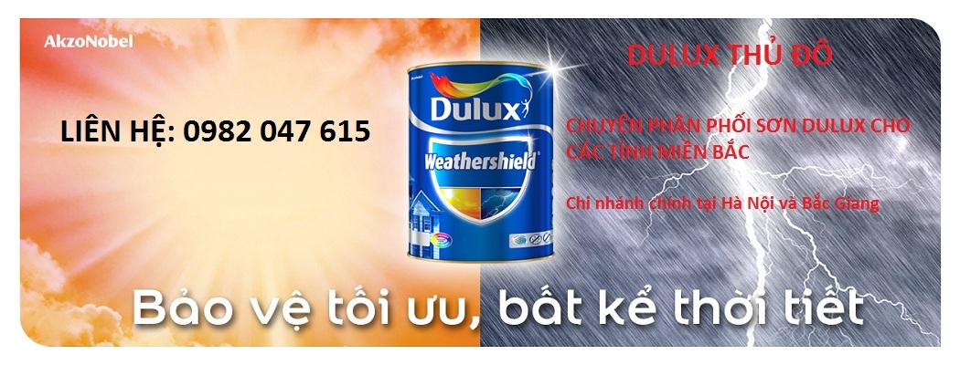 Cửa hàng sơn dulux tại Hà Nội - Trang chủ