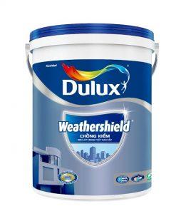 Sơn lót ngoài trời Dulux A936 247x296 - Trang chủ