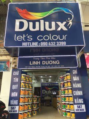 Phân phối sơn Dulux 300x400 - Giới thiệu